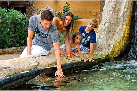 family trip to Marineland Portals Nous