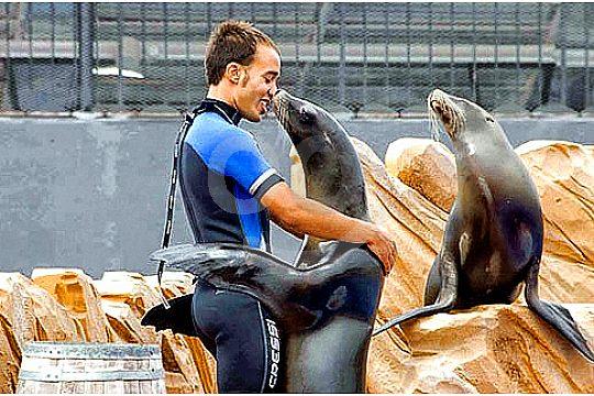 trainer hugs sea lion
