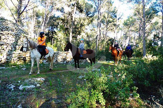 Ausflüge mit Kindern auf Menorca reiten