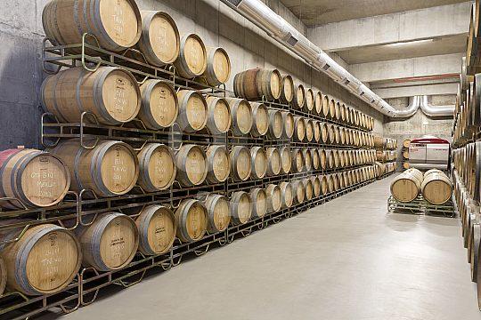Wine tasting in Portugal