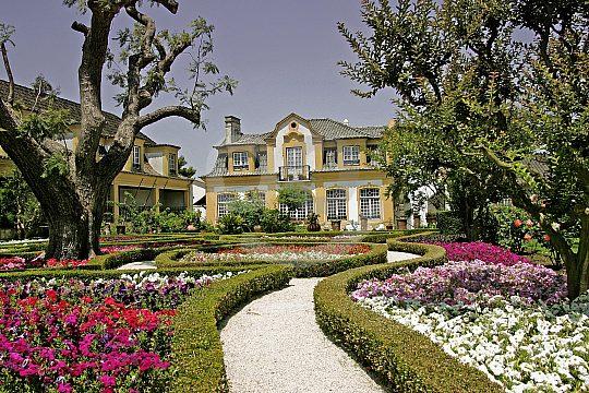 Viticulture in Portugal