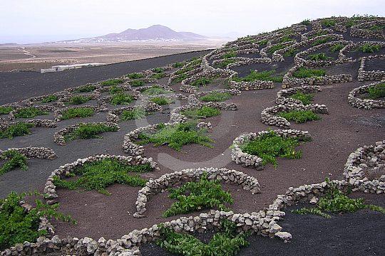 Tour of Lanzarote