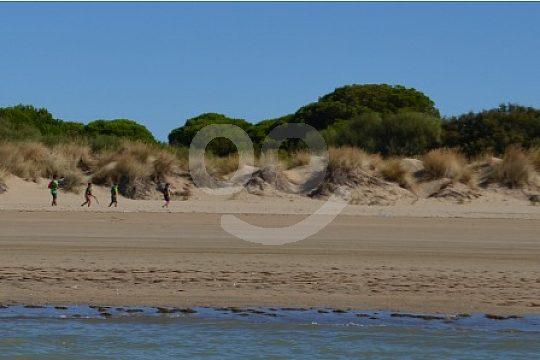 Doñana Natural Park sailing trip