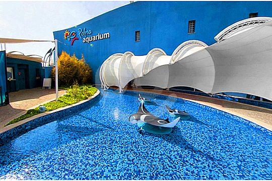 palma aquarium pool at entrance