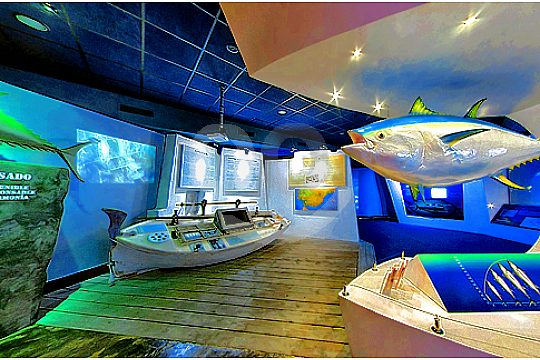 tour to palma aquarium