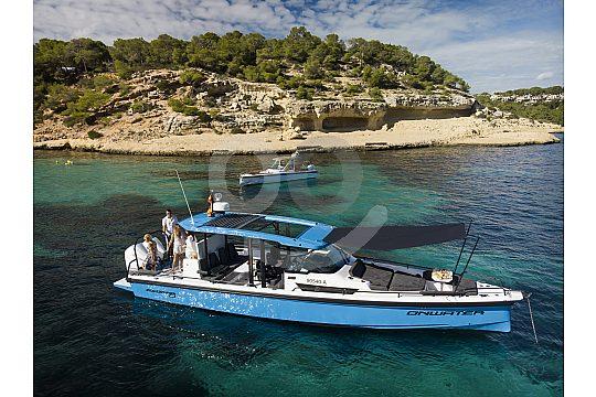 in Palma de Mallorca ein Motorboot chartern
