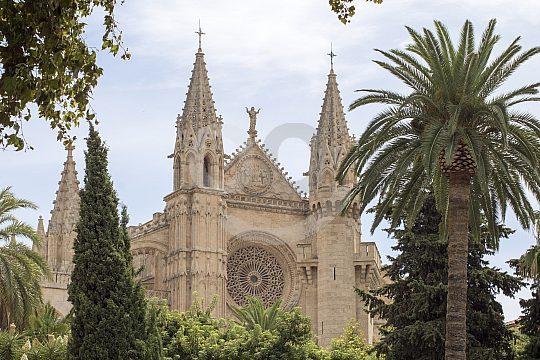 Palma city tour on foot Cathedral La Seu