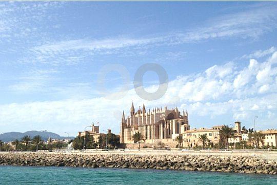 Tour to the sights of Palma de Mallorca