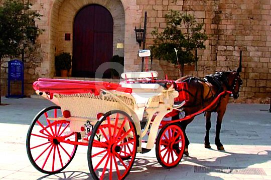 Horse and cart in Mallorca