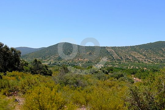 Quad and buggy tours great nature in Albufeira