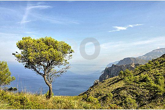 Excursion serra de tramuntana views to the sea