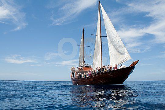 Pirate boat Tenerife