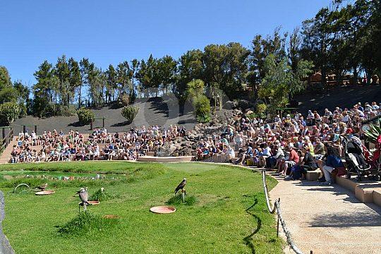 animal shows in Rancho Texas Park Lanzarote