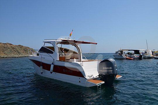 sport motor boat hire in Santa Pola