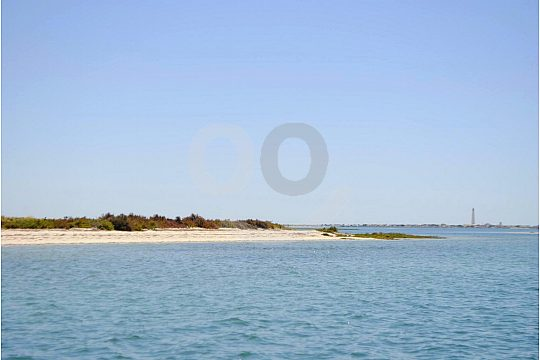 Ria Formosa Algarve Nature Park