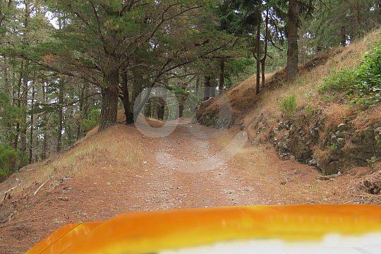 offroad in Madeira on Safari