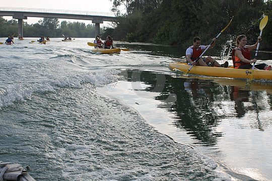 Delta del Ebro kayak rental