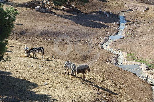 Terra Natura Park Murcia