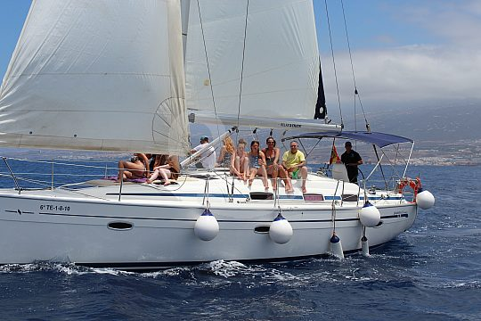 watch dolphins and whales on the Playa de las Americas sailing cruise