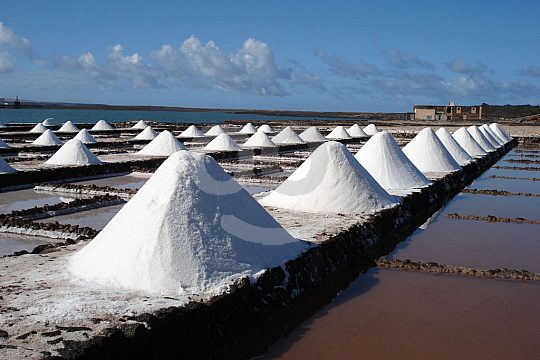Salt systems visit Lanzarote