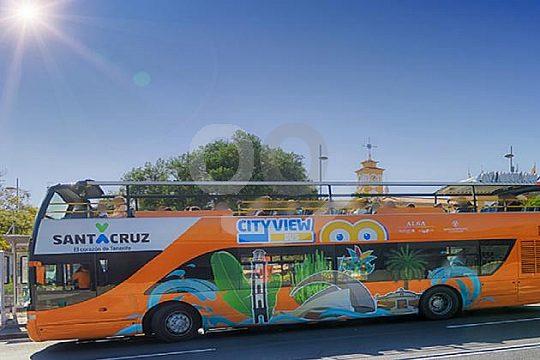 Hop on Hop off in Santa Cruz