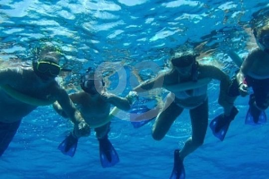 at snorkeling in Tabarca