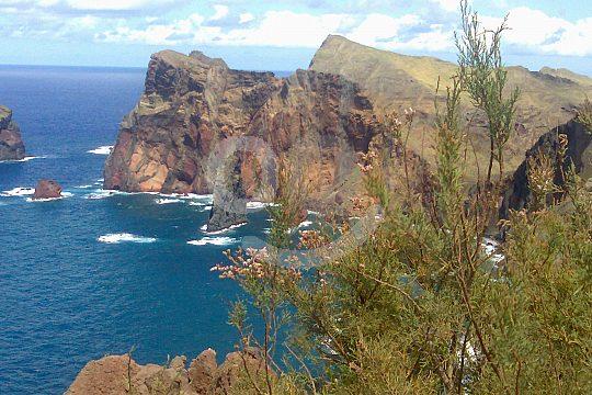 East coast Maderia Tour