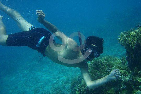 snorkelling in Mallorca