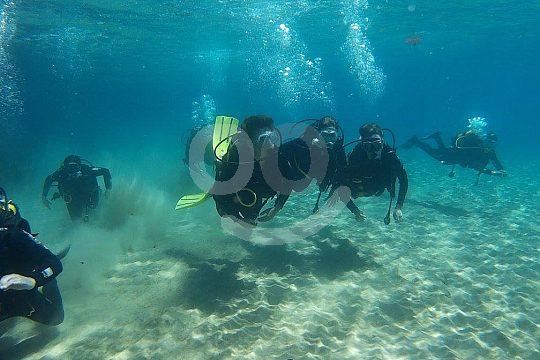 from La Ametlla de Mar on trial dive