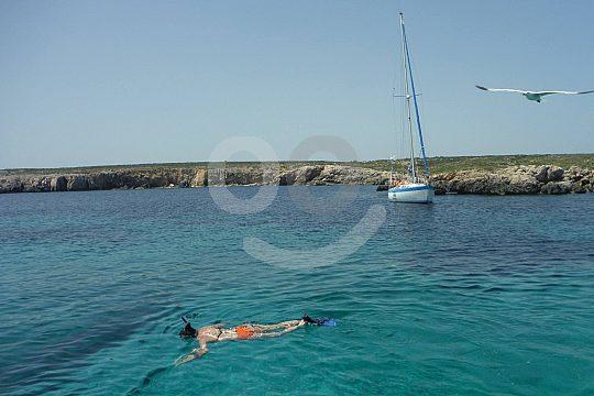 snorkel at sailing