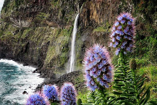 discover waterfalls in Madeira offroad