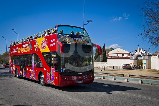 city tour by sightseeing Bus