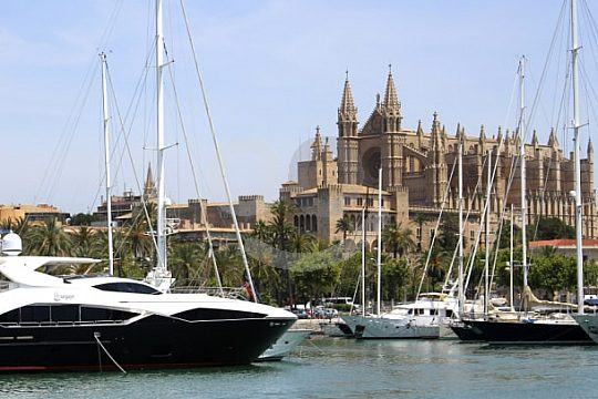 Palma sightseeing tour by bus