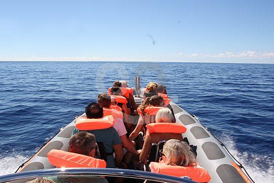 on the speedboat on Madeira