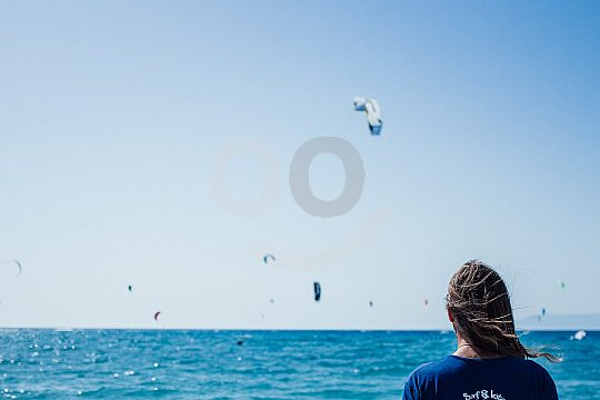 Kite watching from the beach
