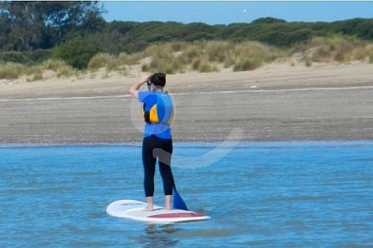 learn stand up paddling technique