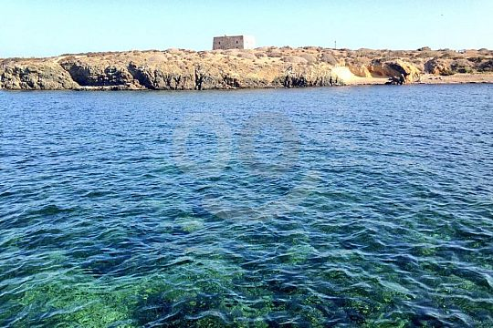 snorkeling on island Tabarca with the water taxi