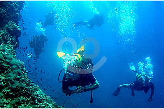 Open Water Diver diving course in Mallorca