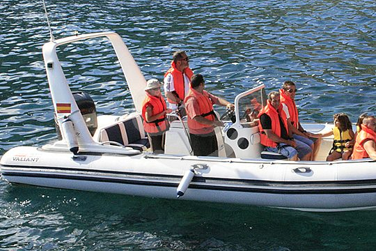 tour by speedboat in Tenerife north