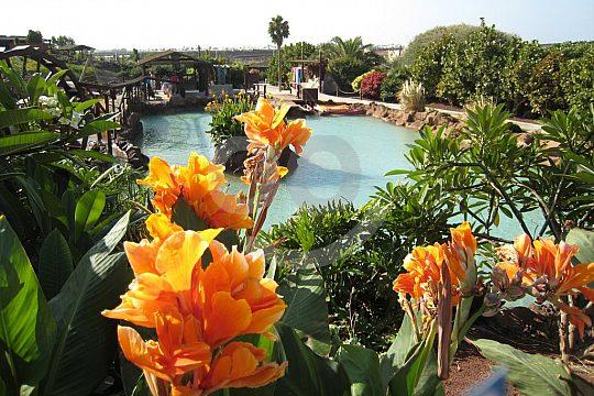 Rancho Texas Lanzarote Tickets Park