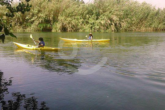 Excursion with a kayak in Delta del Ebro