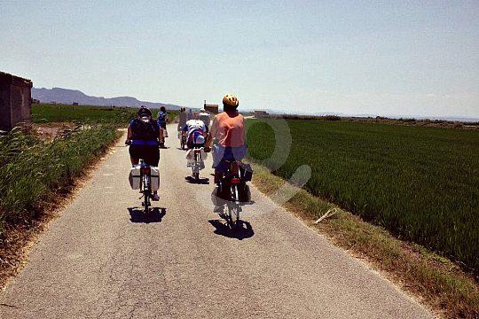 bike tour Valencia to Albufera Natural Park