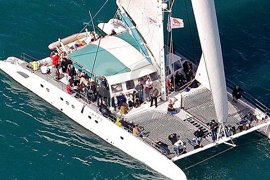 Valencia catamaran from above