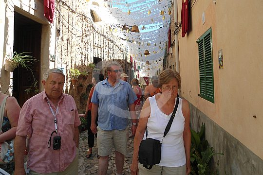 Valldemossa tour with guide