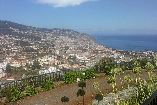 Sea views in Madeira