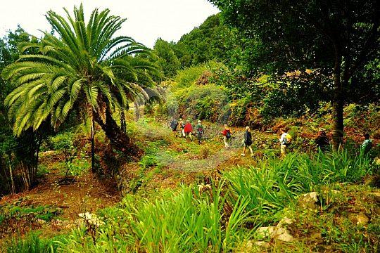 walking in La Gomera
