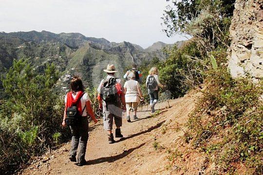 hiking tours Tenerife