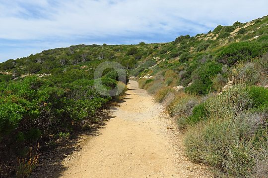 Hiking trail Mallorca