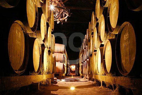 Wine trip in Portugal