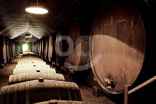 Enjoy portuguese wines